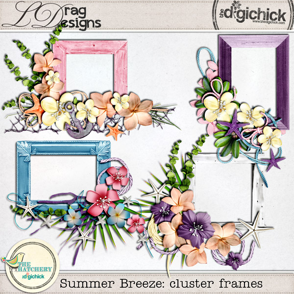 ldrag_summerbreeze_frames_preview